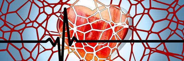 heart-1222517_640